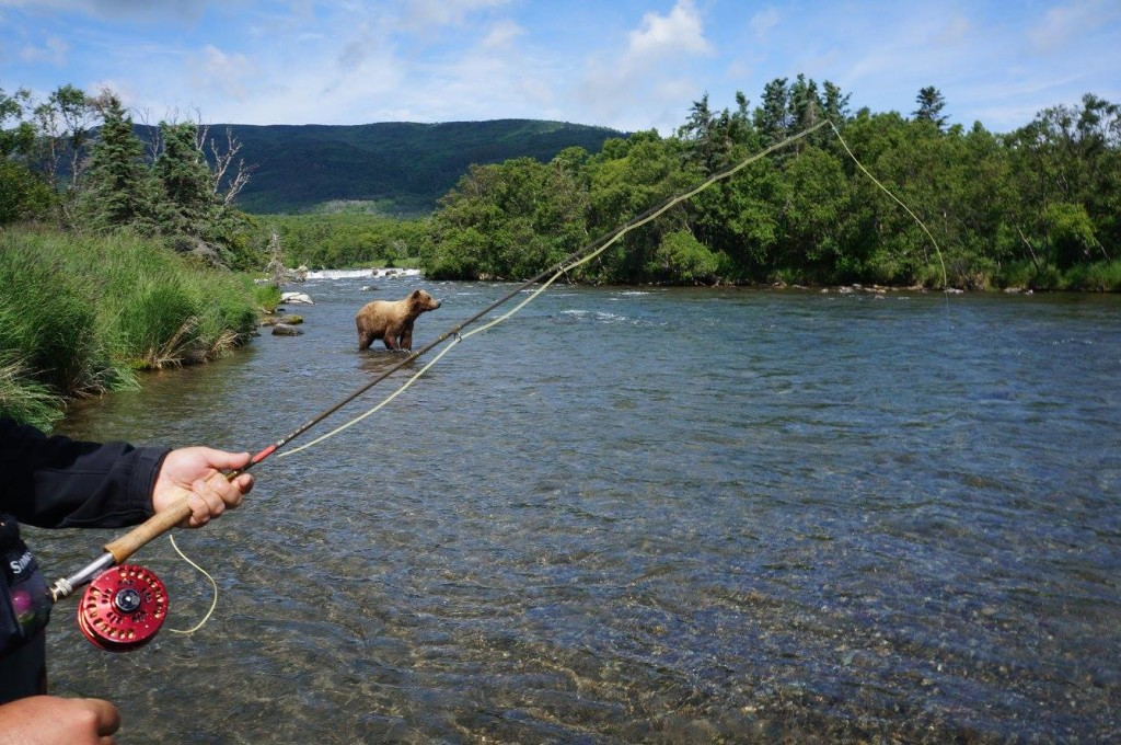 Fly Fishing With Bear