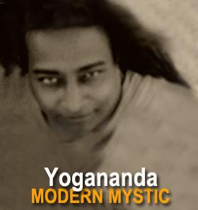 Yogi_Featured2