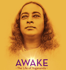 cpf_project_Featured_Image_AWAKE