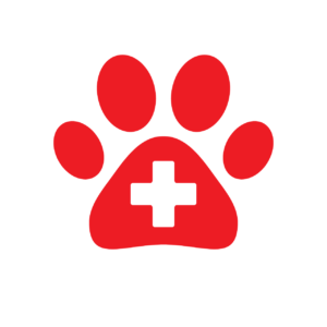 Dog First Aid Kit - My PWD and Me