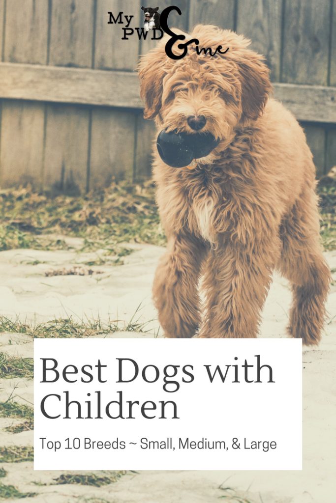 Best Dogs with Children - My PWD and Me