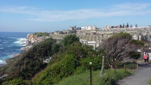 bondi to coogee coastal walk - waverly cemetery