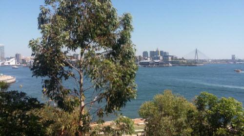 Sydney Harbour walk - Barangaroo Reserve