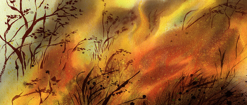 Shannon Jeffries Inspired Art - Wildfires