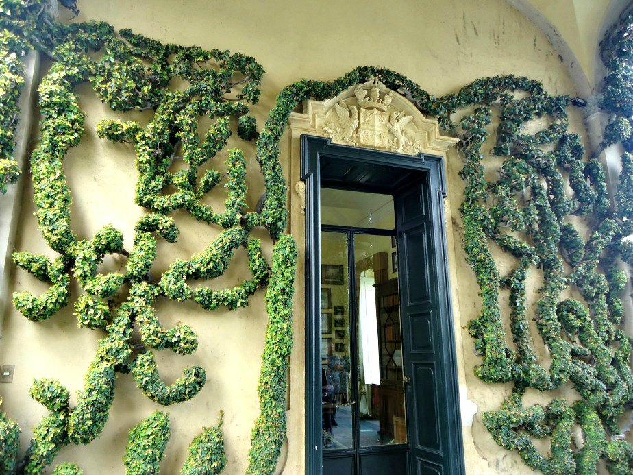 Snake Inspired Plants on the Wall at Villa del Balbianello Lake Como Italy