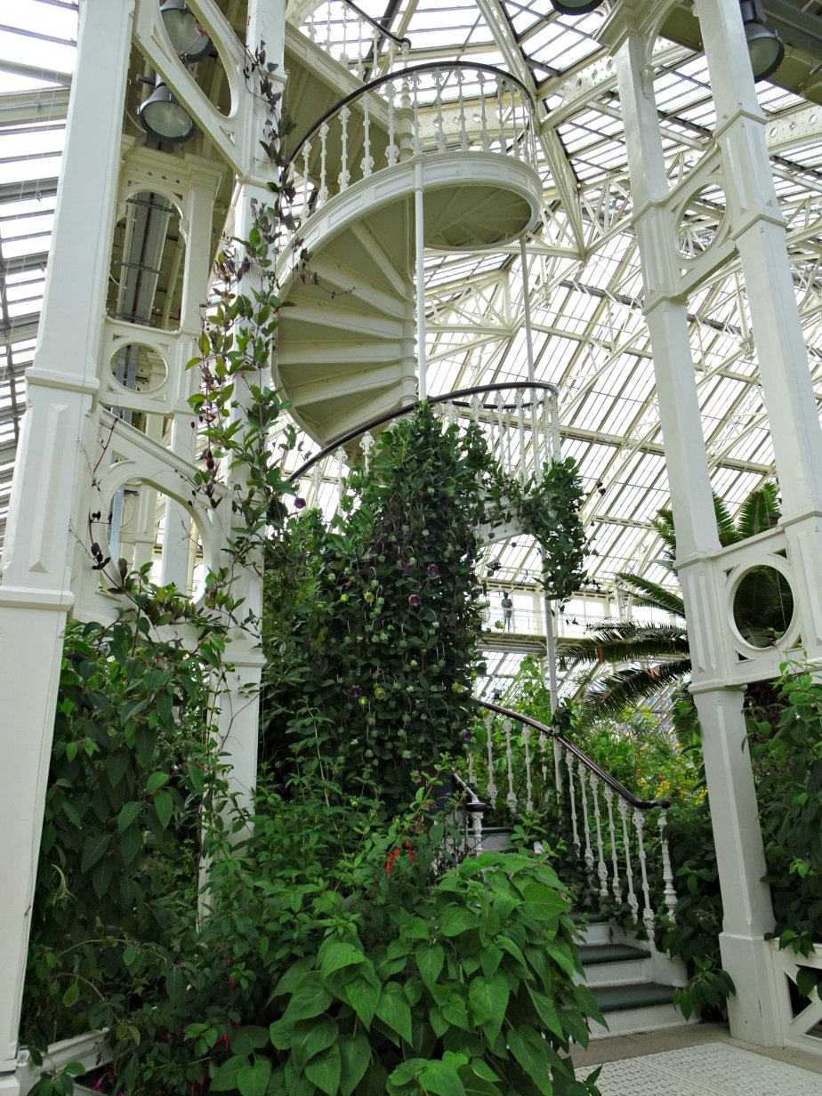 Spiral Staircase in the Temperate House, Kew Gardens