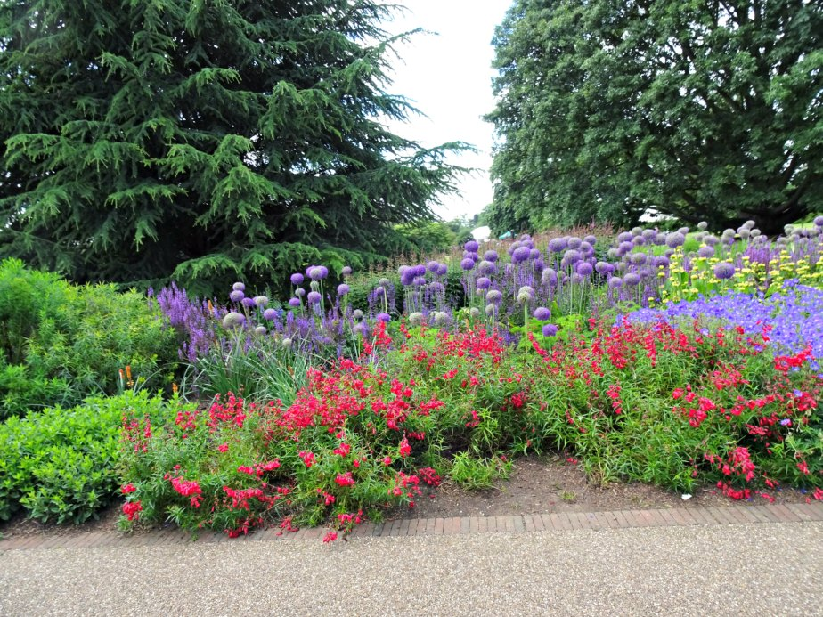 Flower Bed at Kew Gardens