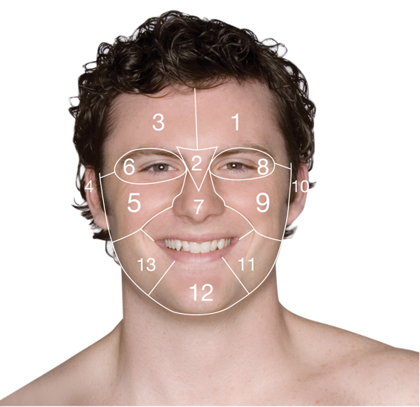 FaceMap_Male1