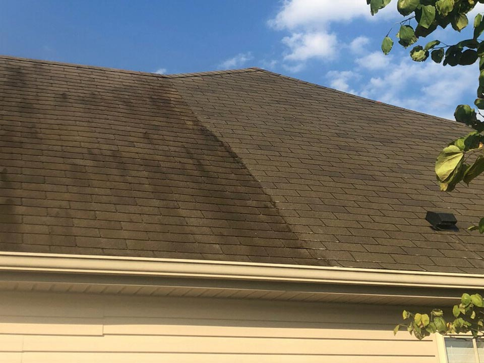 Roof Soft Wash Cleaning in Louisville KY
