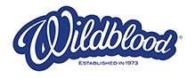 Wordmark Logo Design