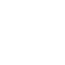 thermal icon