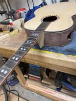 Neck Shaping 1