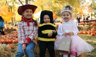 trick-or-treat-trail-franklin-square