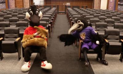 official hoagie of the ravens