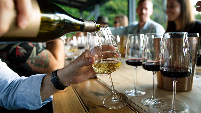 wine adult summer camp