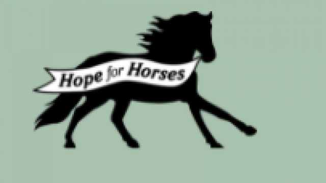 Hope for Horses Rescue