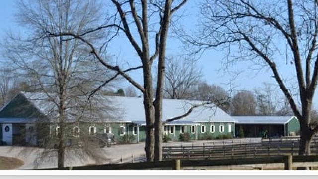 Robindale Farm