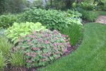 naperville-hinsdale-dupage-gardeners-gardening-service-_1191