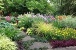 naperville-hinsdale-dupage-gardeners-gardening-service-_1219