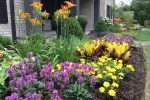 naperville-hinsdale-dupage-gardeners-gardening-service-_1241
