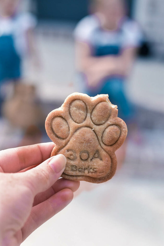 30A Mama - 30A Barks Dog Treats and Dog Friendly Places