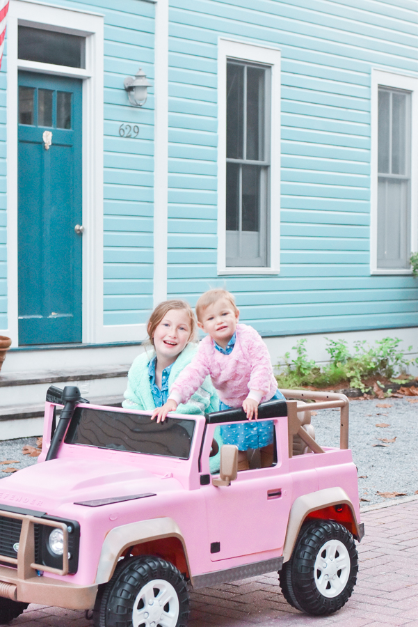 30A Mama blog - Seaside Cottage Rental Agency - Whatcha Dune - Collins pink Defender