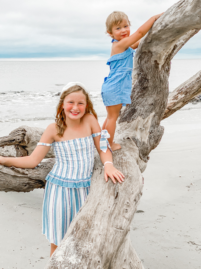 30A Mama Jekyll Island Driftwood beach