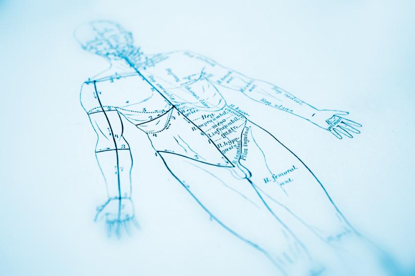 Acupuncture Diagram Treatment