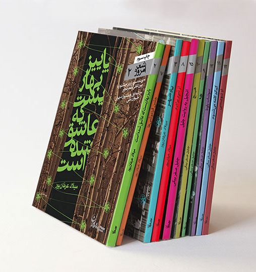 Book collection of The Contemporary Poem | 2009-16