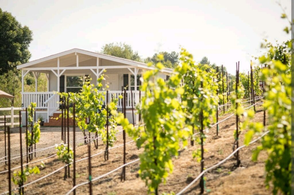 wine country, heart of wine country, airbnb