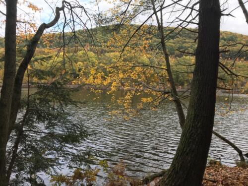 Hudson River 1 (Medium)