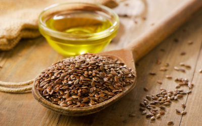 Healthy Ingredient Highlight: Flaxseed