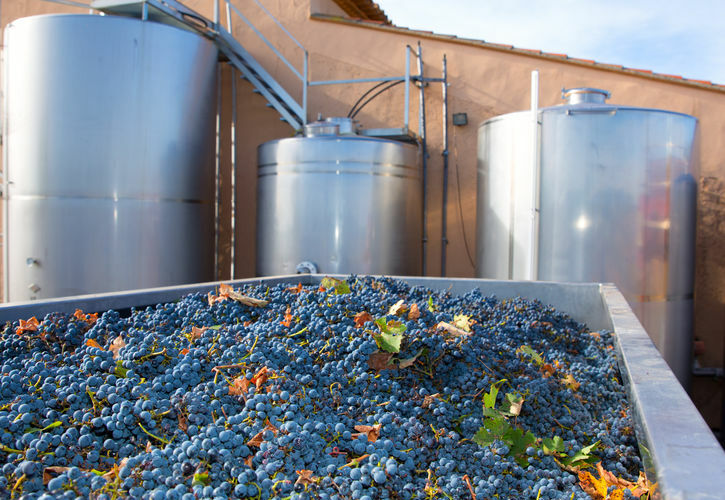 Winery Installation