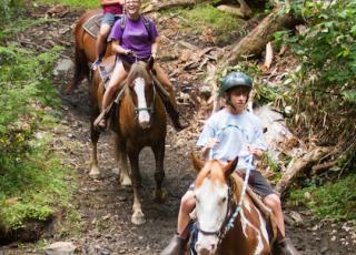 New River Gorge Cabins horseback riding