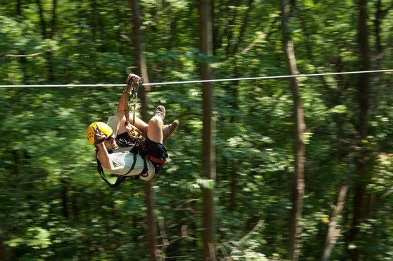New River Gorge Cabins ziplining