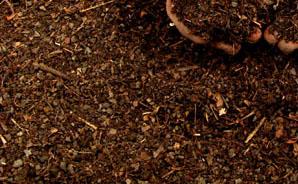 Compost/Organic Material