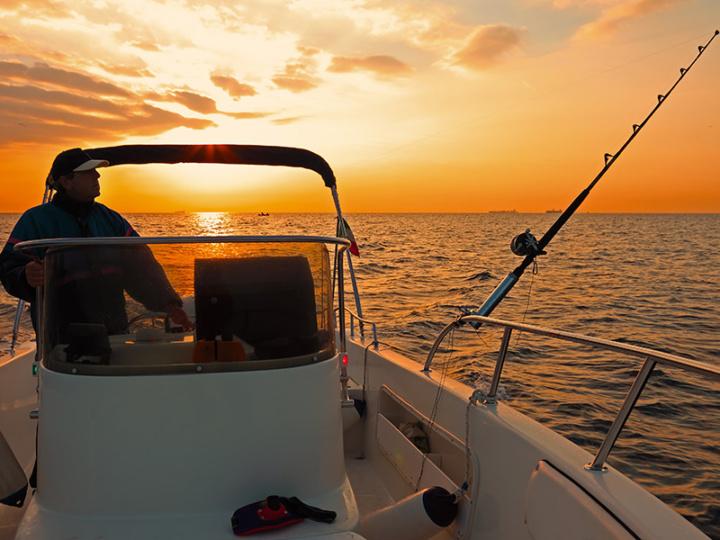 Fishing In Tampa Bay