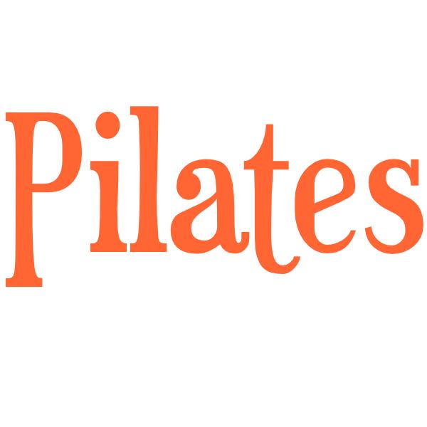 CATFIT Pilates