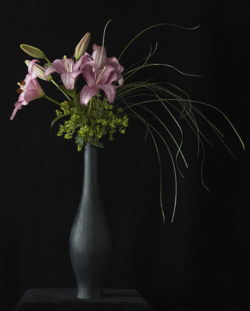 Violet Asiatic Lilies