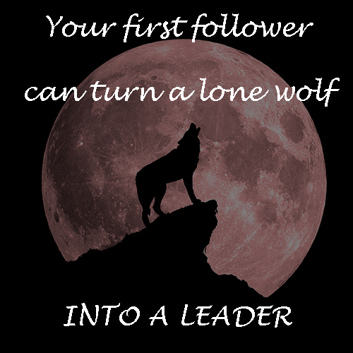 first follower, lone wolf, leadership