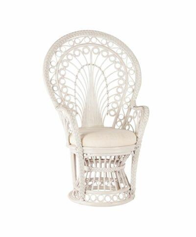 Baby/Wedding Shower Chair