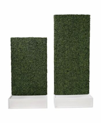 Hedge Walls - white base