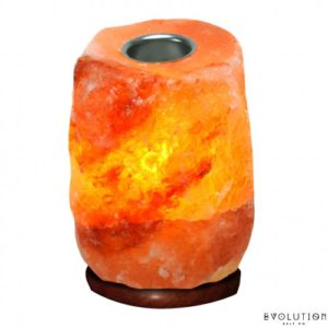 LaVida Massage and Skincare, Skin Care, Himalayan Salt Stone, Himalayan Salt Lamp, Himalayan Mini Salt Lamp with Aromatherapy Cup