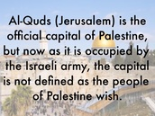 David Friedman: We need to strengthen Israel-US ties with peace plan haha
