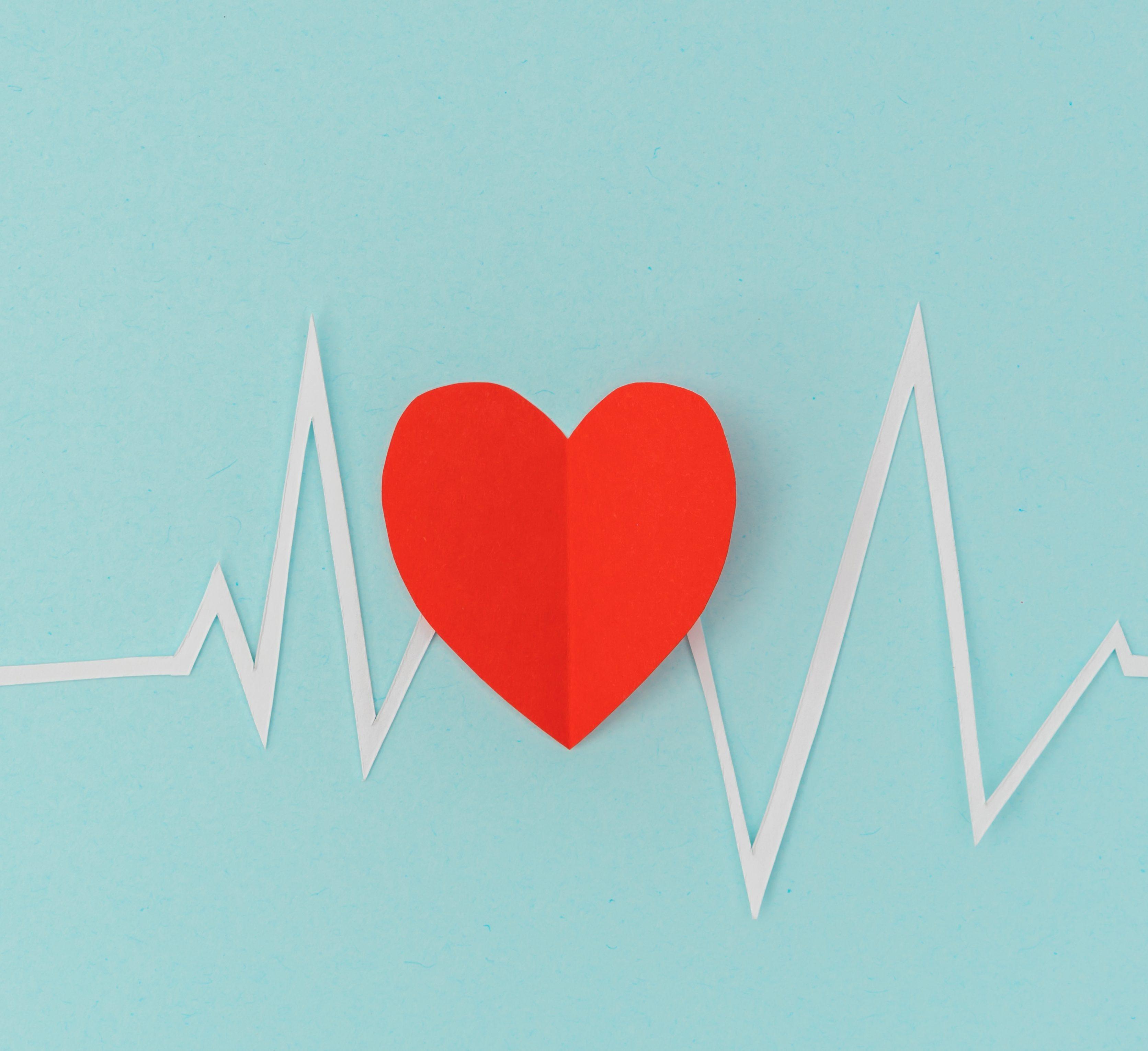 Paper cut of cardiogram of heart rhythm