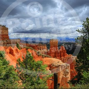 Point North Photography-BRYCE CANYON 2