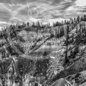 Point North Photography-BRYCE CANYON B&W