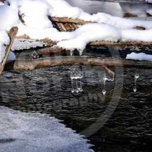 Point North Photography-MUSICAL ICE