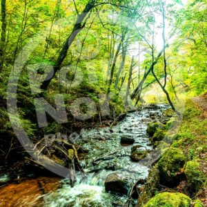 Point North Photography-STREAM ARCH BRIDGE MICHIGAN'S UP