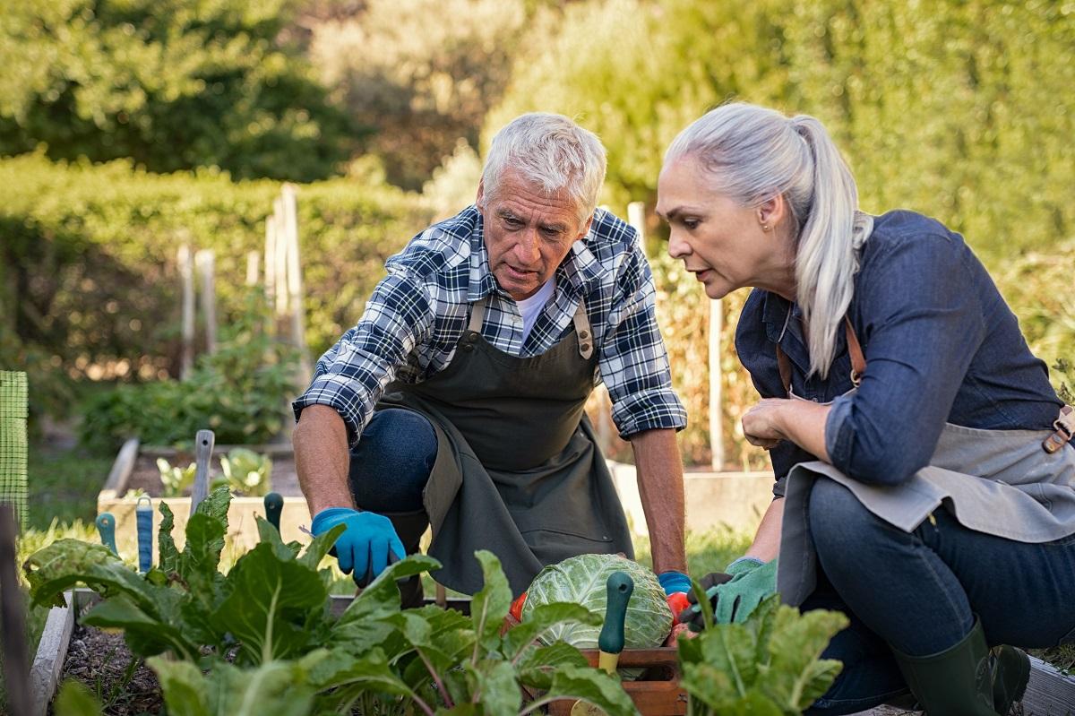 Grow a Garden for Better Health & More Connection